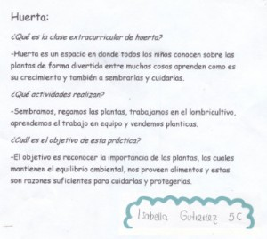 huerta-escolar18