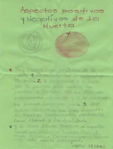 huerta-escolar19